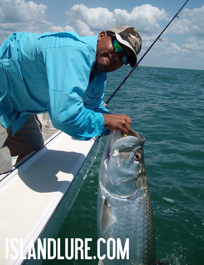 Tarpon fishing tampa bay 6 19 12 fishing charters st for Tarpon fishing tampa