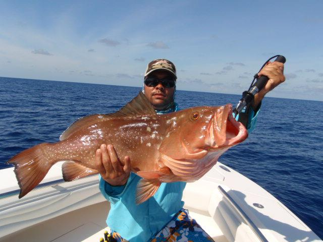 St petersburg deep sea fishing charters fishing for St petersburg fishing report