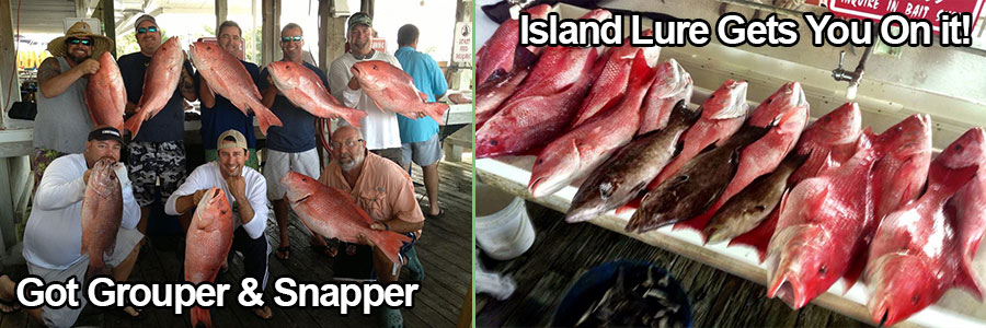 Grouper-Snapper-Home