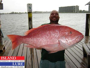 Tommy Butler Red Snapper Fishing pictures