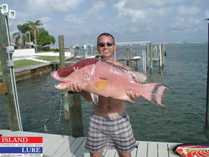 Hogfish Fishing
