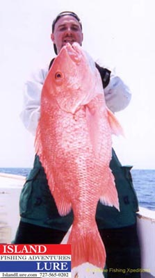 St. Pete beach Fishing