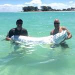 Tarpon Fishing Charters Tampa Bay, FL St Pete Beach