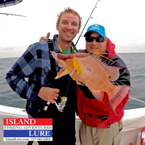 Hogfish St Pete Beach Fishing Charter