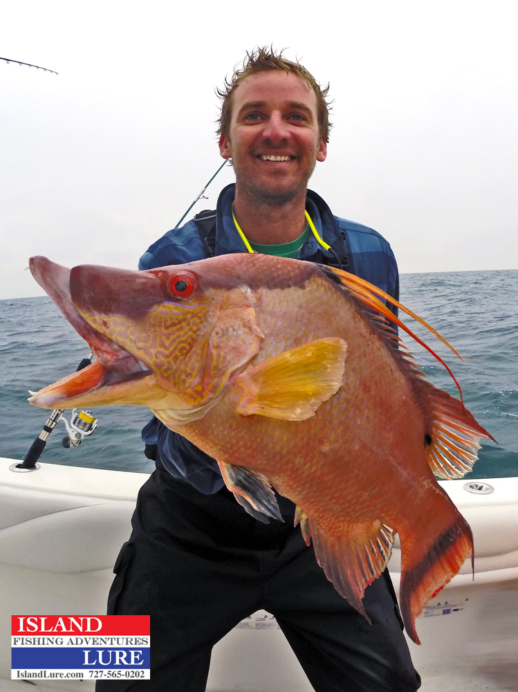 December 2014 st petersburg offshore fishing report for Deep sea fishing trips