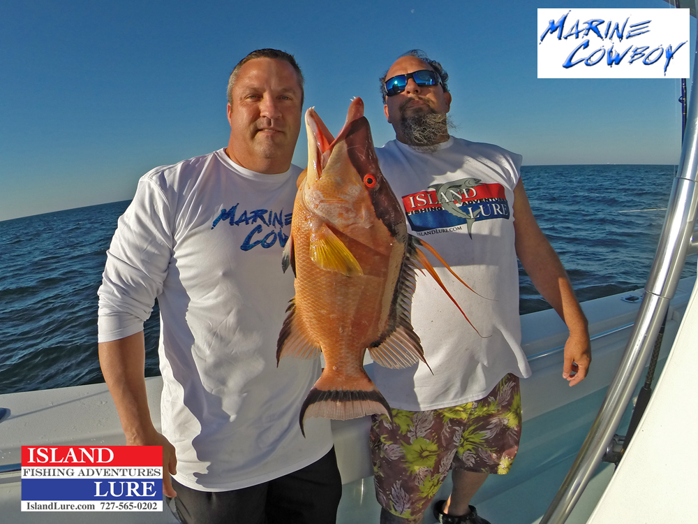 December 2014 st petersburg offshore fishing report for St pete fishing report