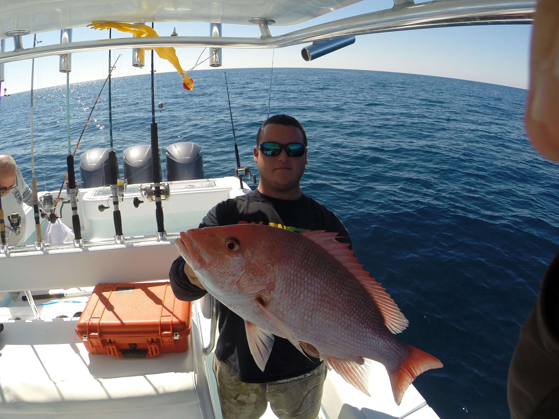 Weekly deep sea fishing charters recap feb 16th feb 23rd for Tampa deep sea fishing