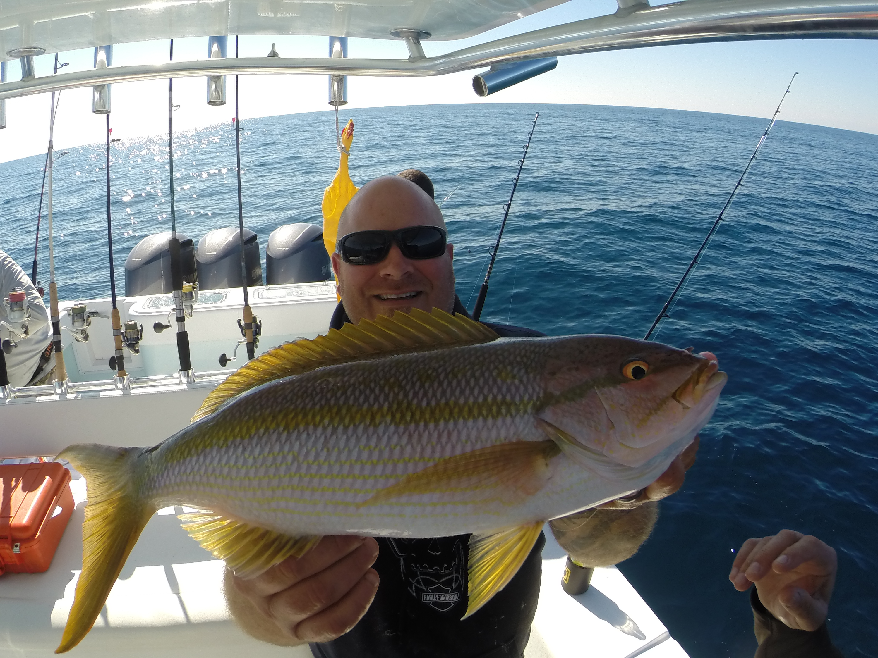 Weekly deep sea fishing charters recap feb 16th feb 23rd for Deep sea fishing trips