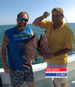 More Spring Hogfish - Island lure Fishing Charters St. Petersburg, FL