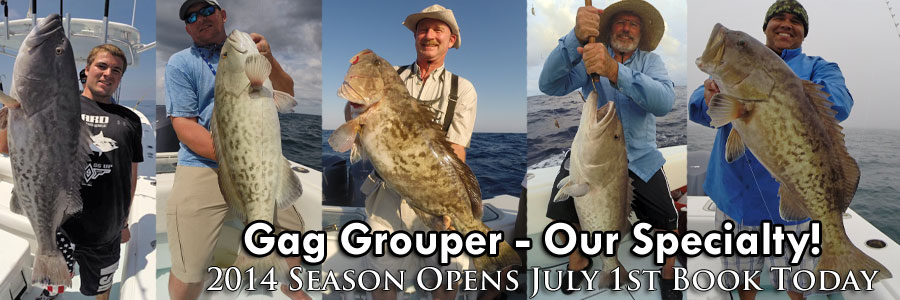 Deep Sea Grouper Fishing Charters - St. Petersburg, Clearwater, Tampa Florida