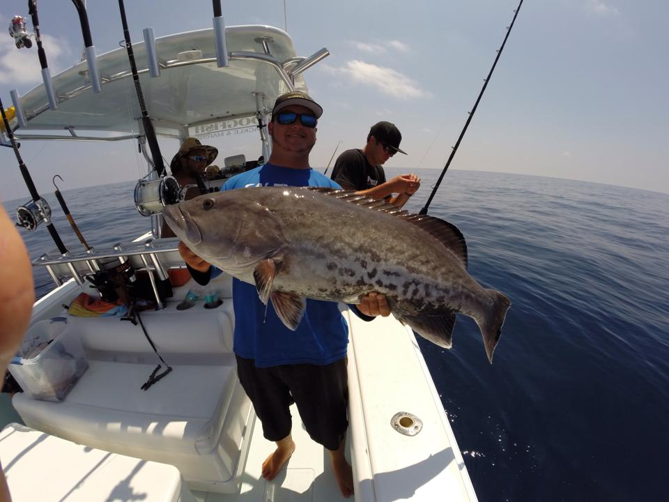 grouper deep sea fishing charters fishing charters st