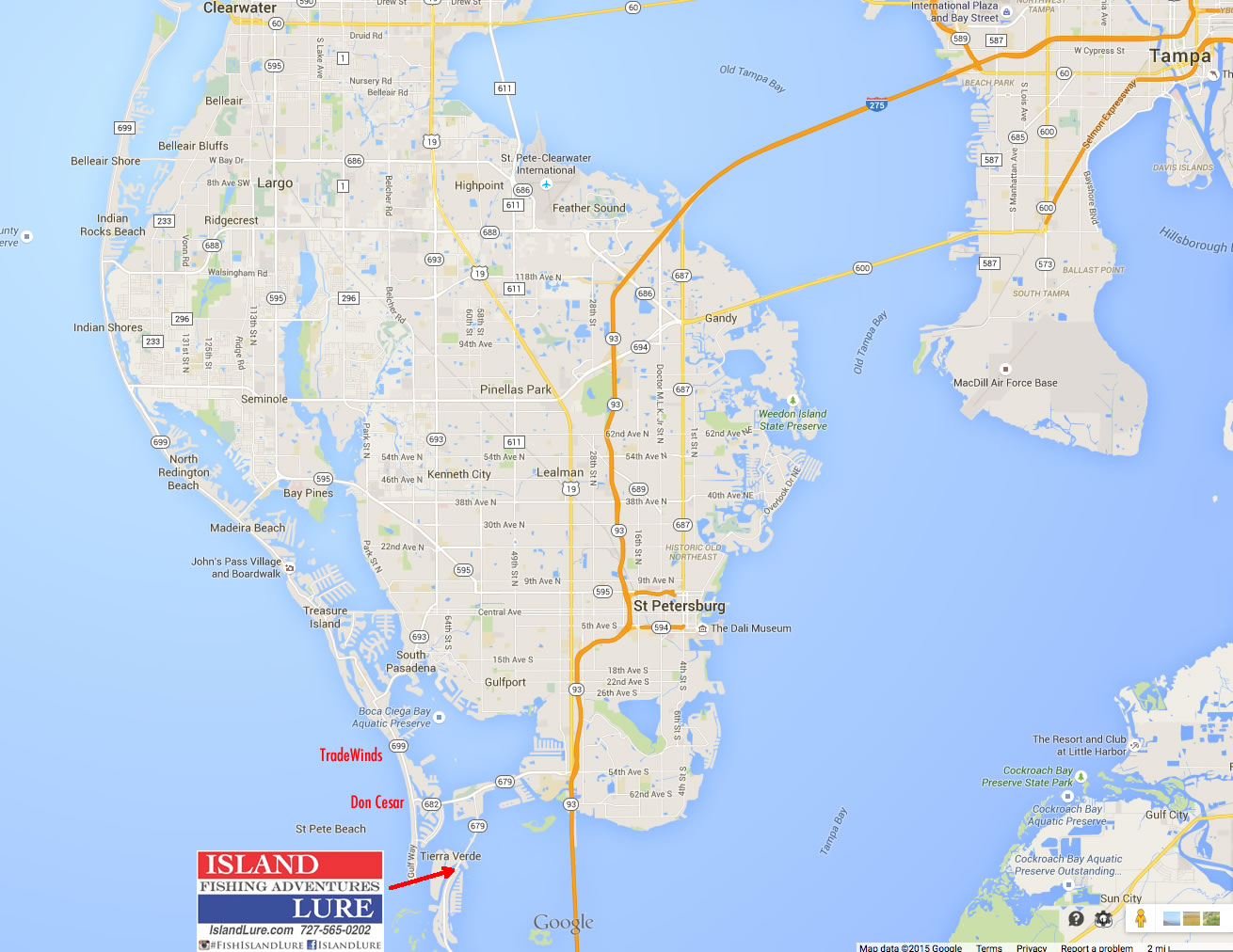 Deep sea fishing charters tampa fl fishing charters st for Fishing resorts in florida