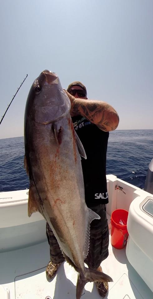 Tampa bay offshore fishing report 5 15 2014 fishing for Deep sea fishing tampa
