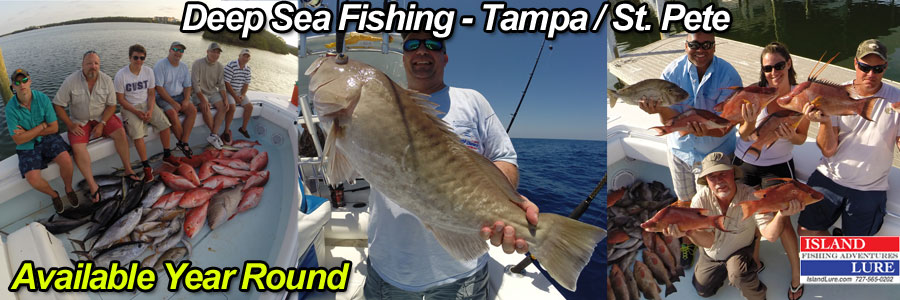 Deep Sea Fishing Charters Tampa, FL - ST. Pete Beach, FL - St. Petersburg, FL