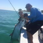 Tarpon Fishing guides Tampa FL
