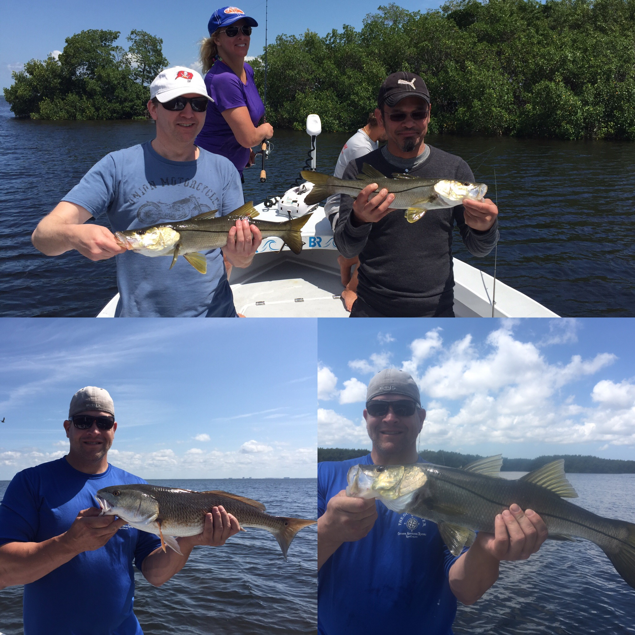 Tampabay inshore snook and redfishing fishing charters for Tampa bay fishing guides