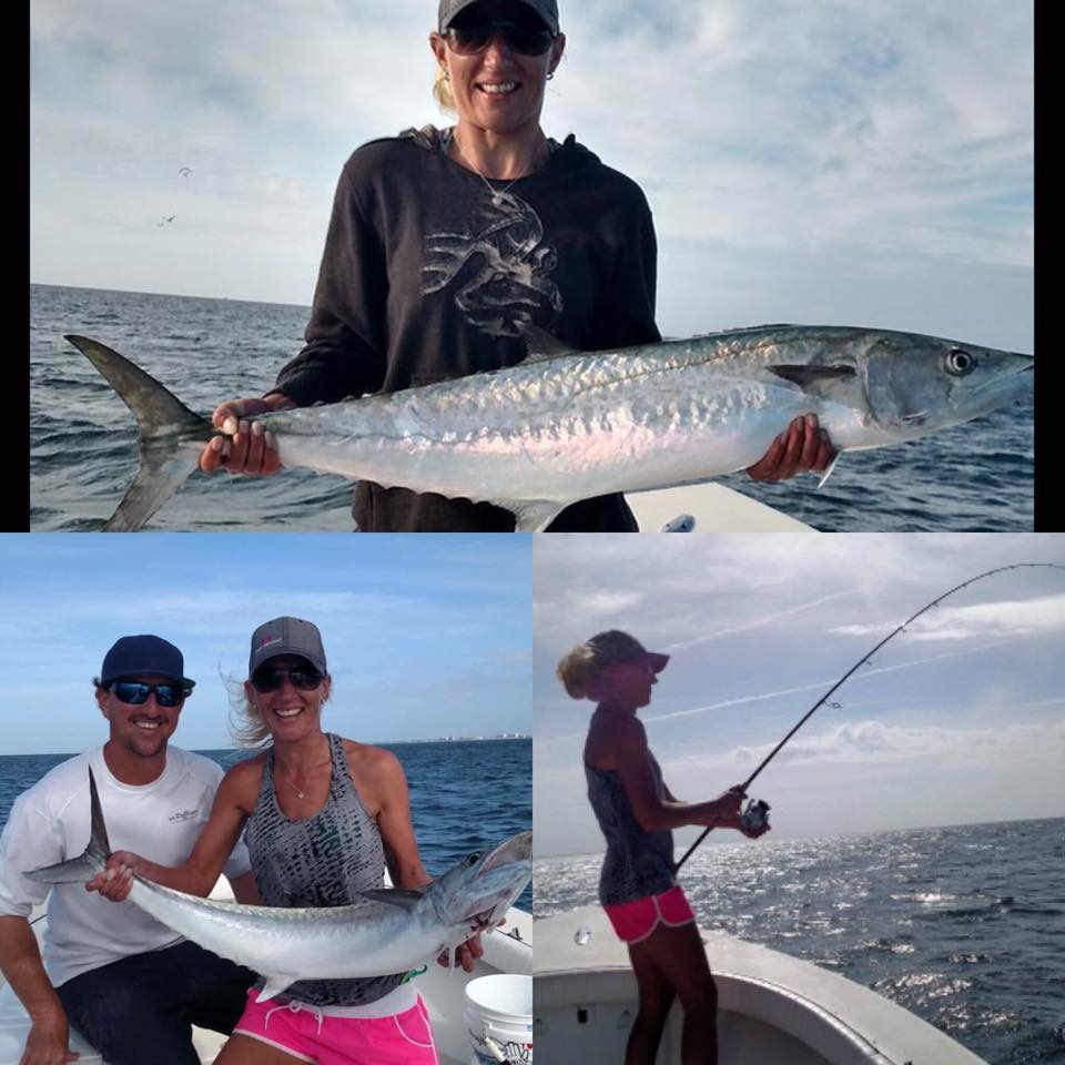 Gulf of mexico kingfishing fishing charters st pete for Fishing charters mexico beach fl