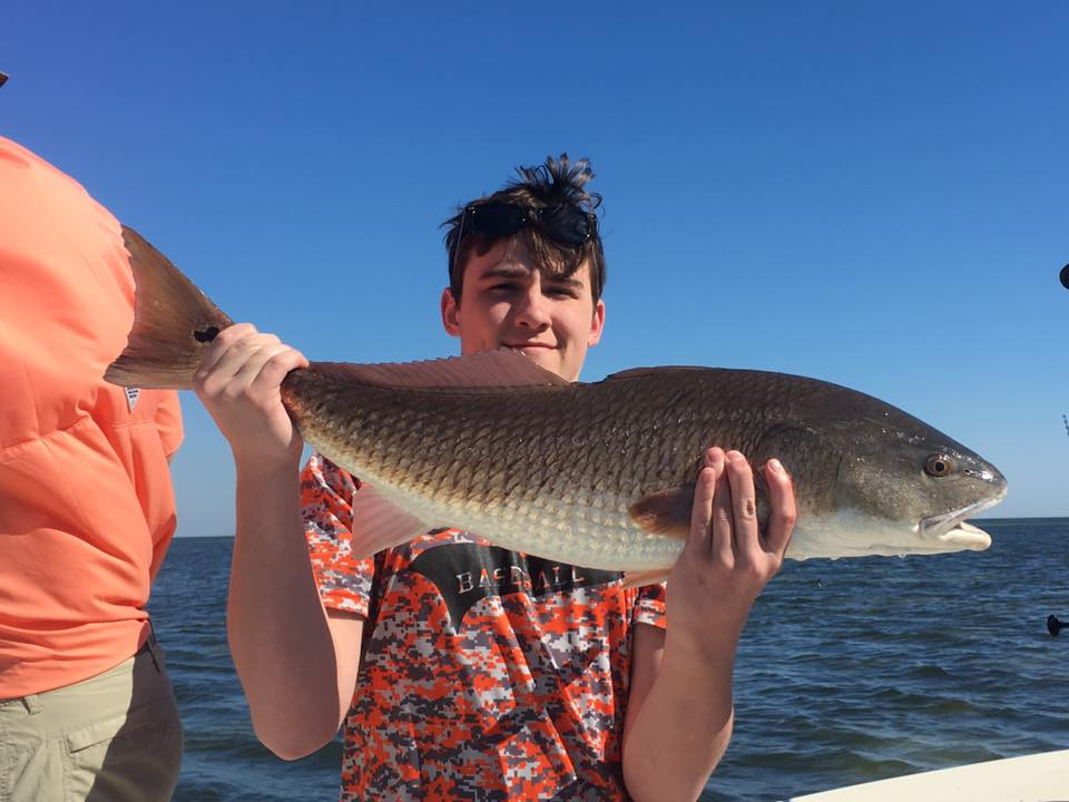 Tampa bay snook redfish and trout fishing charters st for Tampa bay fishing guides