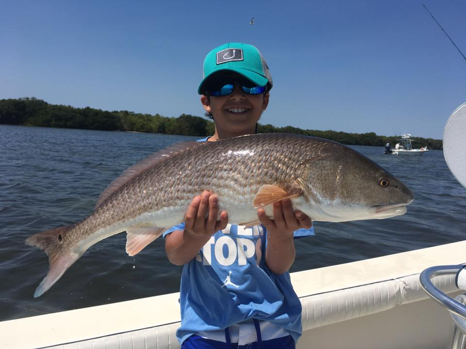Tampa bay redfish snook and trout fishing charters st for Fishing st pete beach