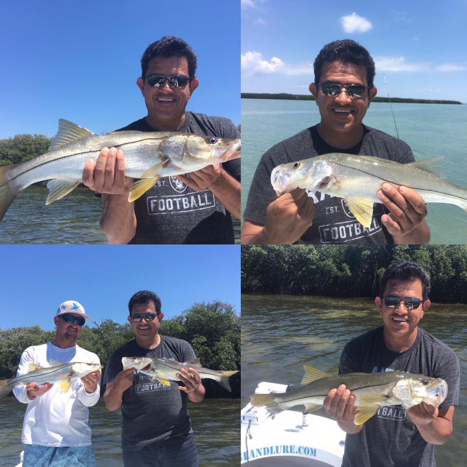 Tampa bay snook fishing fishing charters st pete beach for Tampa bay fishing guides