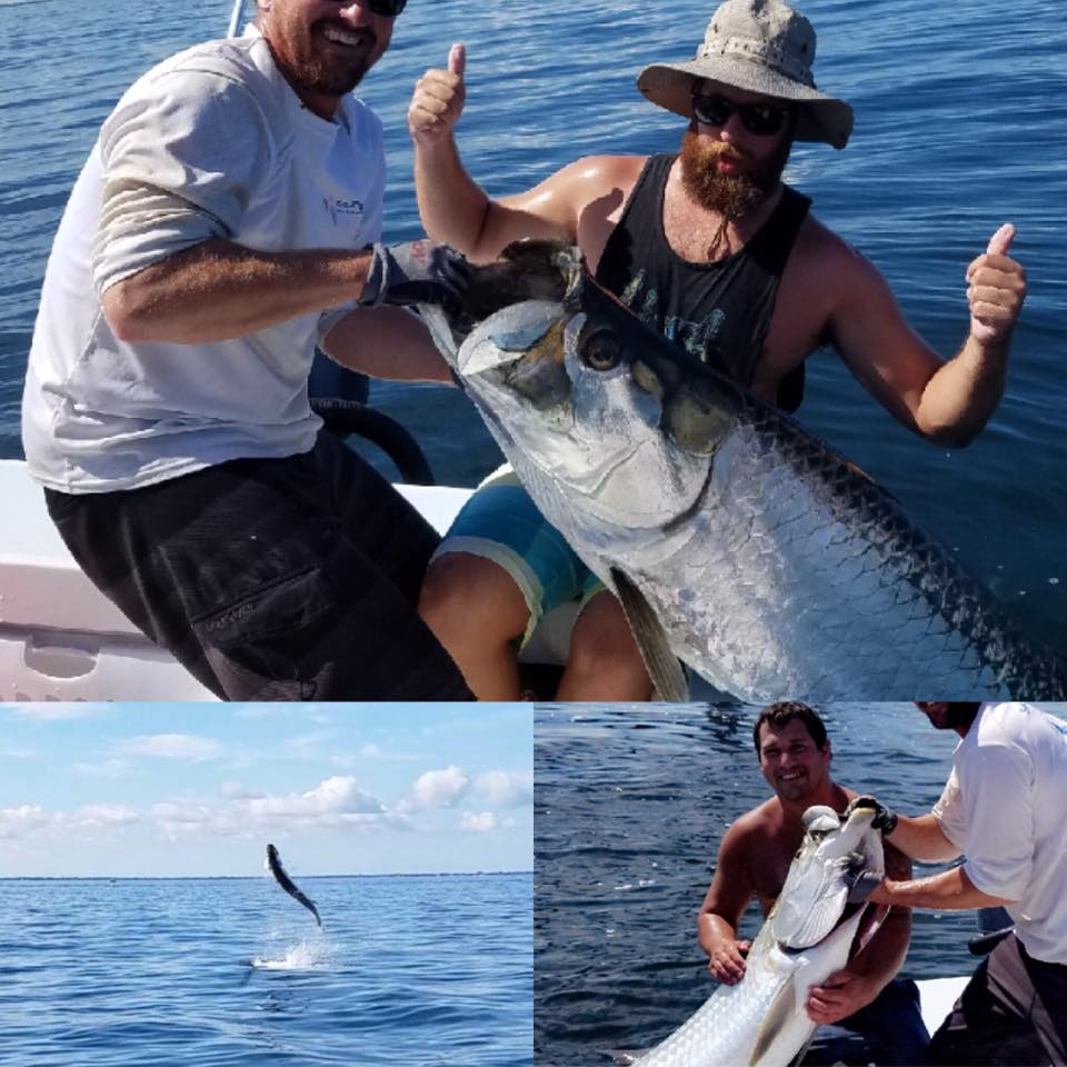 Tampa bay tarpon fishing fishing charters st pete beach for Tarpon fishing charters