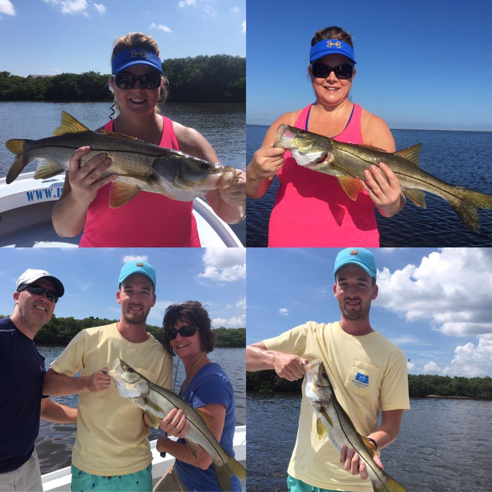 Tampa bay inshore snook fishing fishing charters st for Fishing st pete beach